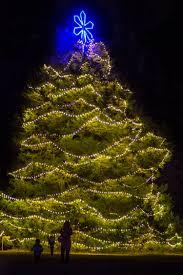 annual tree lighting county of henrico virginia