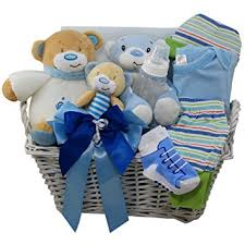 teddy delivery of appreciation gift baskets sweet baby special