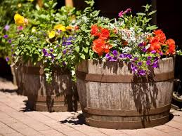 best planters barrels bring out the best in containers hgtv