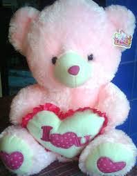 teddy bear pictures flowers pink colour