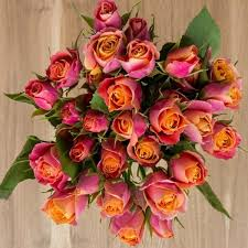 wholesale flowers wholesale flowers wholesale roses in bulks booms magnaflor
