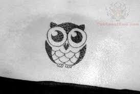 beautiful tiny owl