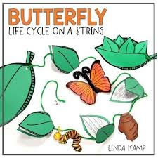 butterfly cycle writing craft by k tpt