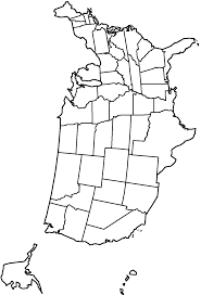 50 states coloring pages cool connecticut state flower coloring
