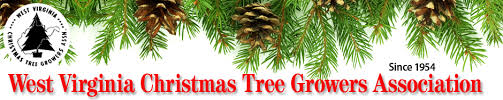 choose and cut christmas tree farms in west virginia