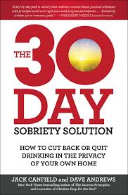 jack canfield the 30 day sobriety solution and a private virtual