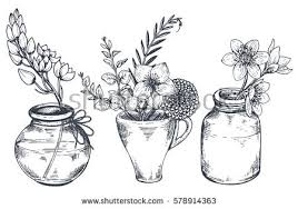 Vase Of Flowers Drawing Hand Drawn Flower Vase Vectors Download Free Vector Art Stock