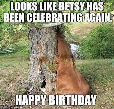 Horse Birthday Meme - real horses memes imgflip