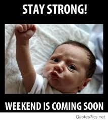 Hump Day Meme - stay strong weekend is coming soon hump day meme dirty picsmine