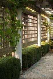 Create Privacy In Backyard by On The Side Of A Wood Pergola Landscape Architect Janice Parker