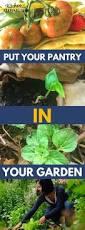 gardening tips 508 best farm u0026 garden images on pinterest garden ideas garden