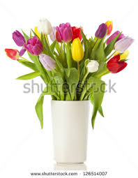 A Flower Vase Flower Vase Stock Images Royalty Free Images U0026 Vectors Shutterstock