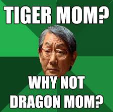 Tiger Mom Meme - moms of our time savvy silver