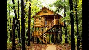 tree house interior tree house plans kids tree houses best