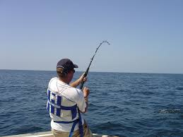 fishing rod wikipedia