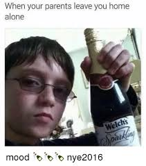 Funny Home Alone Memes - when your parents leave you home alone welchs mood nye2016