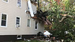 back of house sliced by falling tree in cbs boston