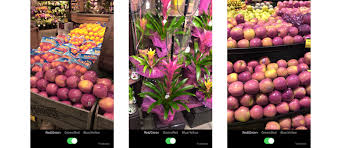 Red Green Color Blind Simulator Microsoft U0027s Ios App Augments Hues For Color Blind Folks
