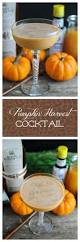 1517 best drinks images on pinterest beverages cocktail parties