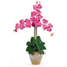Orchid Cut Flowers - nearly natural triple phalaenopsis silk orchid flowers in dark