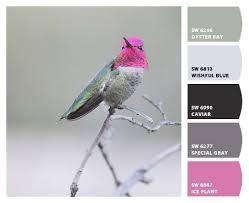 97 best color grey pink images on pinterest color black color