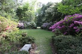 Botanical Gardens South Carolina Kalmia Gardens Hartsville South Carolina Sc