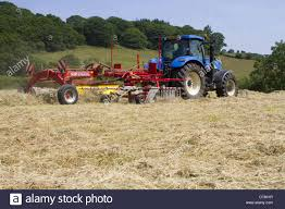 raking hay stock photos u0026 raking hay stock images alamy