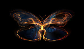why i tibco the butterfly effect the tibco