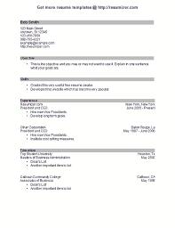 Metro Pcs Resume Resume Example Demo Of Style 17 For Free Resume Creator