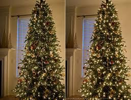how to photograph a christmas tree u2013 colorvale