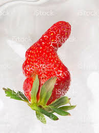 strange strawberry looking like a bunny viewed from side stock