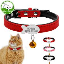 customized soft padded collar personalized cat id tag free