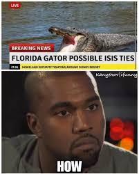 Gator Meme - florida gator possible isis ties funny dank memes gag