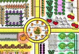 Companion Gardening Layout Garden Layout Ideas The Farmer S Almanac