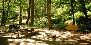 Elwha Dam Rv Park Reviews by Altair Campground Outdoor Project