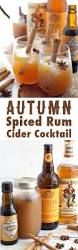 best 25 spiced rum drinks ideas only on pinterest captain