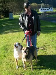 australian shepherd off leash predator defense fritz u0027 heartbreaking and brutal death couple u0027s