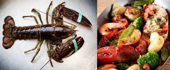 cuisine nantaise cuisine nantaise restaurants nantes shopping culinaire nantes