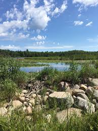 Chippewa National Forest Map Best Trails In Chippewa National Forest Alltrails Com