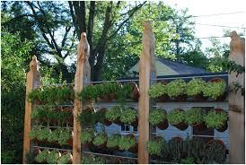 modern plant pots modern plants pot rseaptorg download solidaria garden garden trends