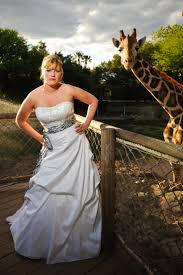 Reid Park Zoo Christmas Lights by 28 Best Tucson Az Weddings Images On Pinterest Tucson Arizona