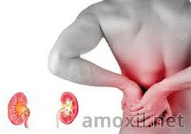 amoxil vs kidney infections