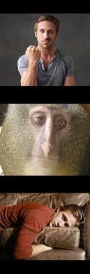 Ryan Gosling Meme Generator - ryan gosling monkey conversation blank template imgflip