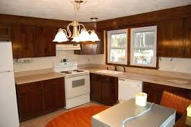 how much do kitchen cabinets cost costco vs home depot of high end