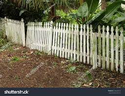 moldy old white broken picket fence stock photo 146536472