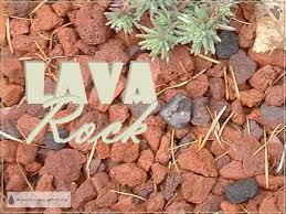 lava rock my favorite red volcanic mulch