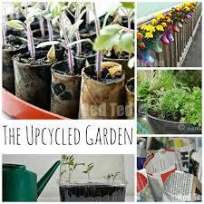 thrifty gardening ideas to get your garden going
