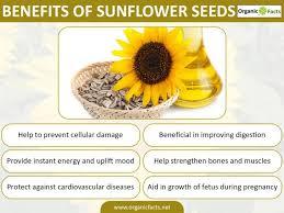 5 interesting benefits of sunflower organic facts