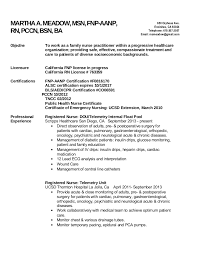 Family Nurse Practitioner Resume Examples by Nurse Practitioner Resume Objective Examples