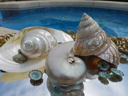 100 shells decorations home ideas for decorating with